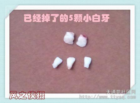 2012-12-10 19.43.18_副本.jpg
