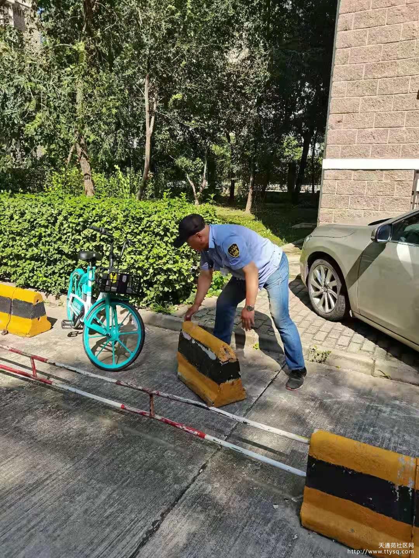 天通中苑秩序维护七队对小区内共享单车进行清理